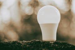 在土壤的LED电灯泡保存的能量和环境概念的 免版税库存照片