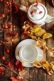 在土气别致的样式的茶 饮料当事人松弛茶妇女 在的杯子的绿茶 库存照片