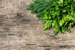在土气木桌上的新鲜的绿色莳萝和荷兰芹草本 图库摄影