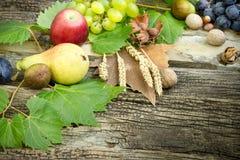 在土气木桌上的有机季节性秋天果子 免版税库存照片