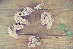 在土气木桌上的淡紫色花;葡萄酒概念 免版税库存照片