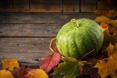 在土气木桌上的绿色南瓜 库存照片