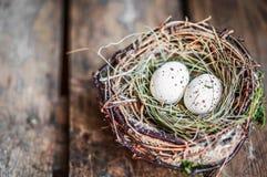 在土气木背景的复活节彩蛋巢 免版税库存照片