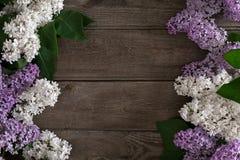 在土气木背景的淡紫色开花与招呼的消息的空的空间 顶视图 图库摄影