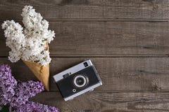 在土气木背景的淡紫色开花与招呼的消息的空的空间 顶视图 免版税库存照片