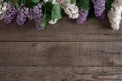 在土气木背景的淡紫色开花与招呼的消息的空的空间 顶视图 免版税图库摄影