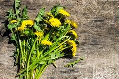 在土气木背景的黄色蒲公英花 免版税库存照片