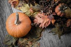 在土气木头的南瓜和秋天叶子 免版税图库摄影