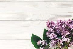 在土气白色木背景上面vi的美丽的淡紫色花 库存照片