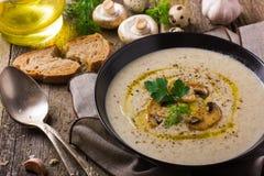 在土气背景的蘑菇奶油色汤 免版税库存照片