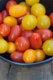 在土气设置的新鲜的水多的祖传遗物蕃茄 免版税库存图片