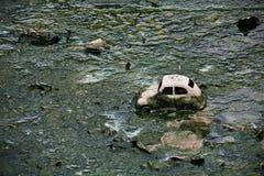 在土的玩具汽车。 库存图片