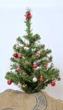 在土豆大袋的装饰的圣诞树 库存图片