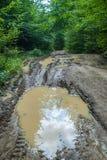 在土路的泥浆坑 免版税图库摄影