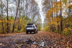 在土路的路汽车在秋天森林里 库存图片