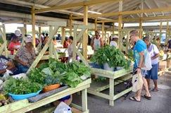 在圣克鲁瓦美国维尔京群岛加勒比的蔬菜批发市场 免版税图库摄影
