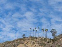 在圣加百利山附近的供徒步旅行的小道 免版税图库摄影