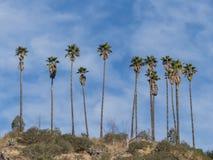 在圣加百利山附近的供徒步旅行的小道 库存图片
