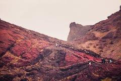 在圣地洛伦索的红色岩石指向,马德拉岛 免版税库存照片