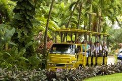 在圣基茨希尔的游览车,加勒比 免版税库存图片