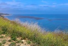在圣塔巴巴拉附近的风景加利福尼亚海岸 免版税库存图片