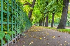 在圣彼德堡降低秋天夏天庭院看法  免版税库存照片