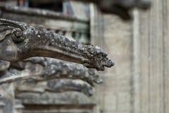 在圣徒加蒂安哥特式大教堂的面貌古怪的人游览的, 库存图片