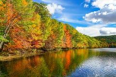在圣徒布鲁诺公园的秋天季节 免版税库存照片