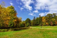 在圣徒布鲁诺公园的秋天颜色中 库存照片