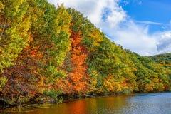 在圣徒布鲁诺公园的秋天颜色 免版税库存照片