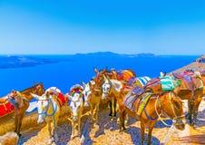 在圣托里尼海岛在希腊 免版税库存图片