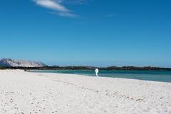 在圣特奥多罗附近的撒丁岛海滩 库存照片