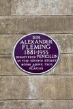 在圣玛丽的医院的亚历山大・弗莱明先生匾在伦敦 免版税库存图片
