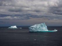 在圣约翰` s附近的冰山 库存图片