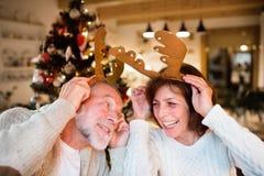 在圣诞树佩带的鹿鹿角前面的资深夫妇 库存图片