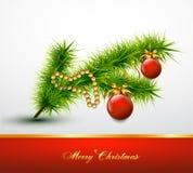 在圣诞树分支的圣诞节球 向量 免版税库存图片