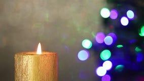 在圣诞树前面的圣诞节蜡烛 影视素材