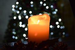 在圣诞树前面的蜡烛光在背景 免版税图库摄影