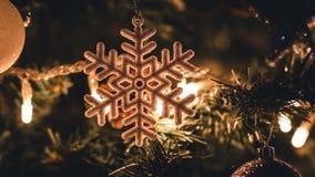 在圣诞树由后照的雪剥落 免版税库存照片