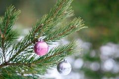 在圣诞树的圣诞节桃红色和银色球分支在被弄脏的背景 免版税库存照片