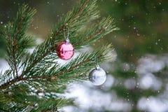 在圣诞树的圣诞节桃红色和银色球分支在被弄脏的背景 免版税库存图片