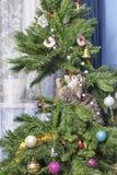 在圣诞树的猫 淘气逗人喜爱的小猫 免版税库存图片