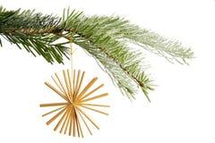 在圣诞树的秸杆星 图库摄影