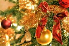 在圣诞树的红色弓 库存照片