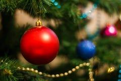 在圣诞树的红色球 图库摄影