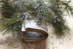在圣诞树的美元 免版税图库摄影