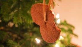 在圣诞树的被搅拌的自创姜饼 免版税库存图片