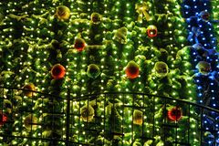 在圣诞树的诗歌选 库存图片
