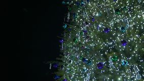 在圣诞树的诗歌选 股票视频