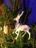 在圣诞树的鹿玩具 库存图片